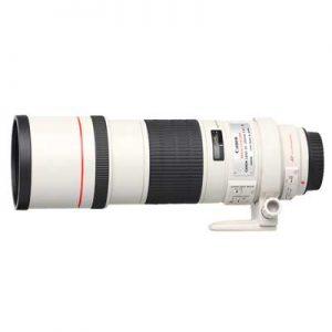 �ٻ Canon EF 300mm f/4L IS USM